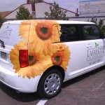 Delivery Vehicles for a Retail Flower Shop